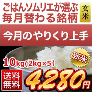 福井県産 つきあかり10kg玄米
