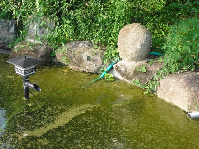 池の水の循環に
