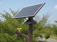 太陽追尾式のソーラーパネル