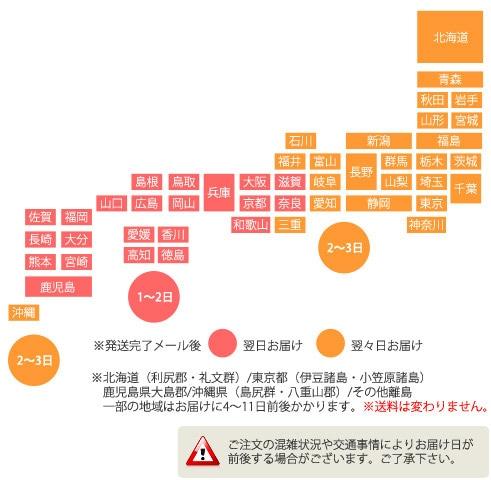 東日本は発送完了メール後2〜3日、西日本は1〜2日でのお届けになります。離島等一部地域はそれ以上かかる場合がございます。