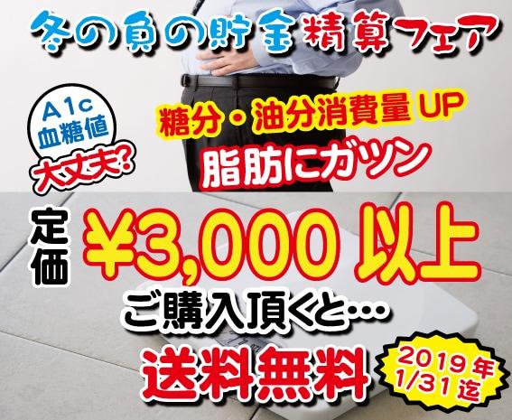 新春キャンペーン2