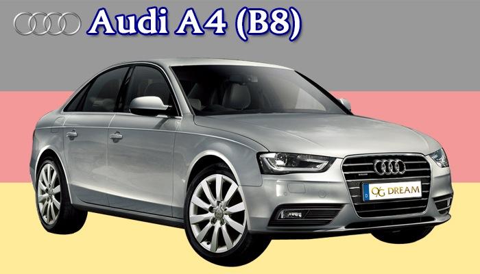 スタンダードフロアマット Audi A4 (B8)