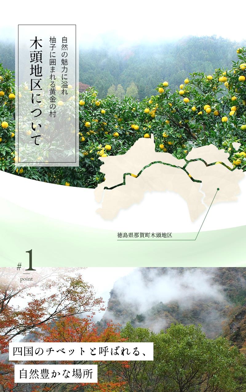 自然の魅力に溢れ 柚子に囲まれる黄金の村 木頭地区について 徳島県那賀町木頭地区 四国のチベットと呼ばれる、自然豊かな場所
