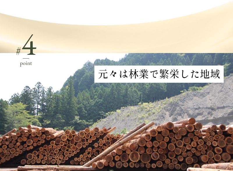 元々は林業で繁栄した地域