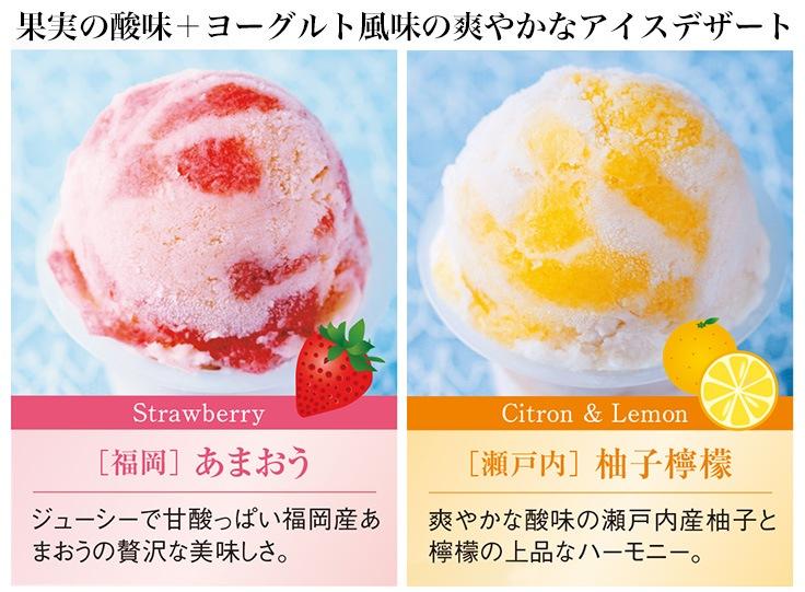 アイス内容1
