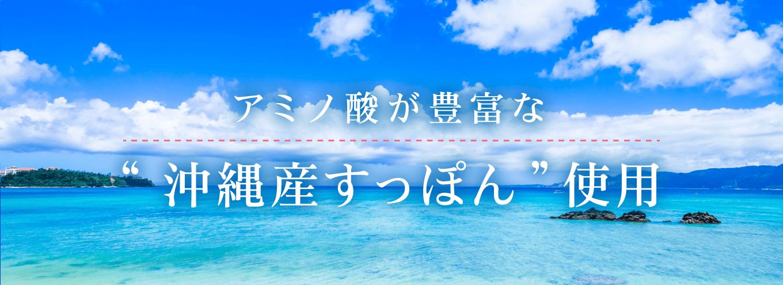 アミノ酸豊富な沖縄産すっぽん