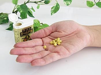ウコンゴールド粒 錠剤