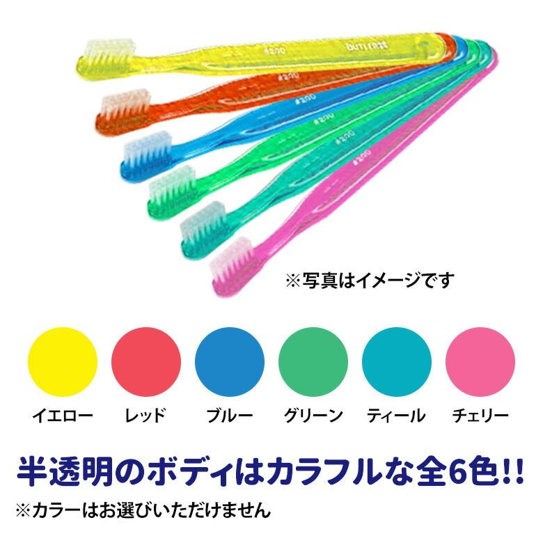 半透明なボディはカラフルな全6色!!
