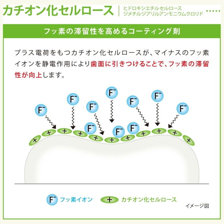 虫歯予防・歯質強化にフッ素配合ソフトジェル チェックアップ Check-Up gel