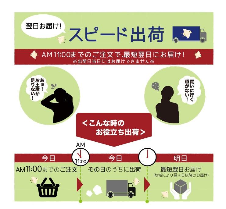 スピード出荷についてのご説明:AM11:00までのご注文で、最短翌日にお届け!※出荷日当日にはお届けできません※