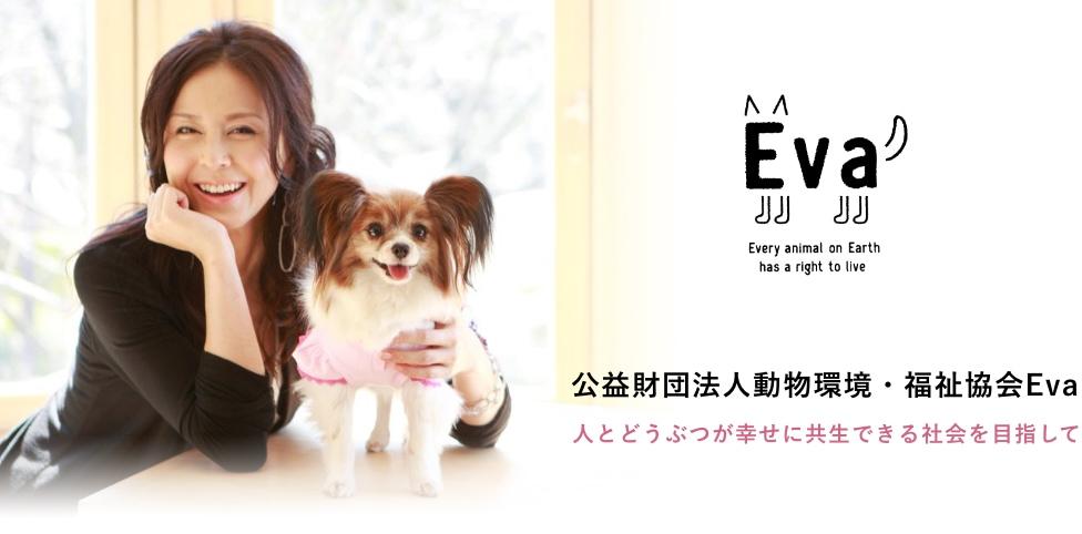 公益財団法人動物環境・福祉協会Eva 人とどうぶつが幸せに共生できる社会を目指して