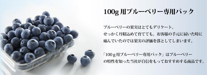 100gブルーベリー専用パック