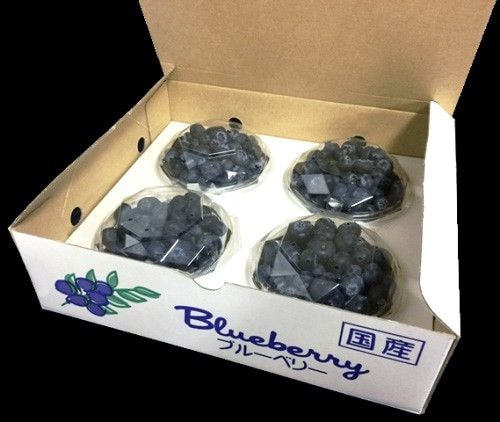 100gダイヤカット型パック 4パック化粧箱