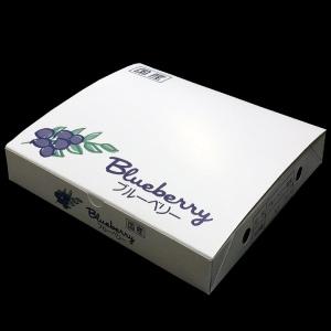 125gブルーベリー専用パック 4パック化粧箱