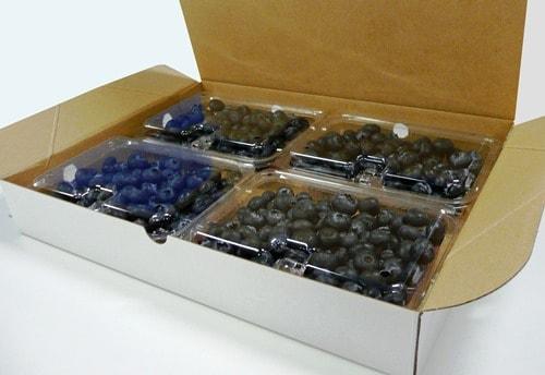 250g果実用パック 4パック化粧箱