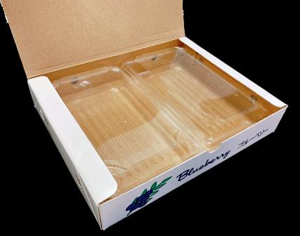 500g果実用パック 2パック化粧箱