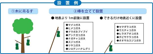 コガネムシトラップの設置例