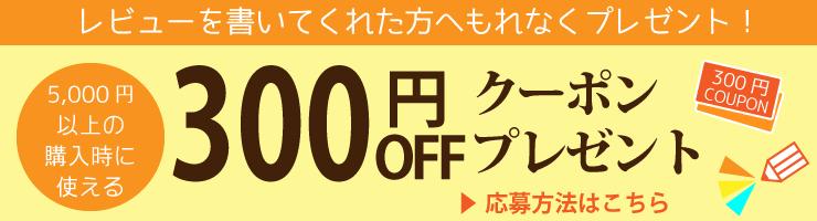 2021年300円クーポンキャンペーン