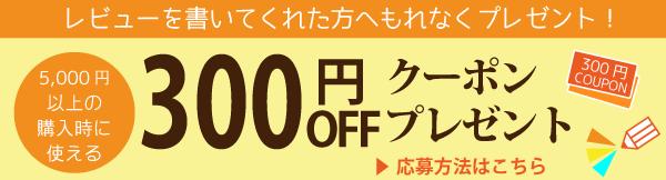 300円クーポンプレゼントキャンペーン