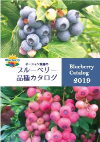 2019年ブルーベリー品種カタログ