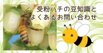 受粉蜂の取り扱いとよくあるお問い合わせ