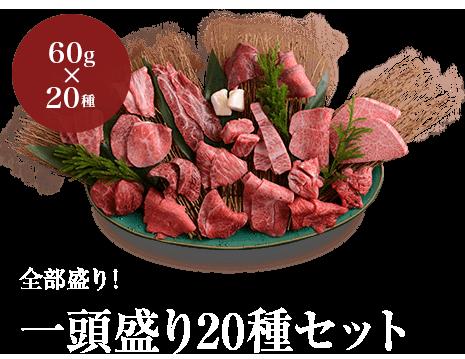 全部盛り!一頭盛り20種セット 特別価格9,720円