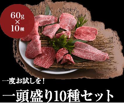 一度お試しを!一頭盛り10種セット 特別価格5,054円
