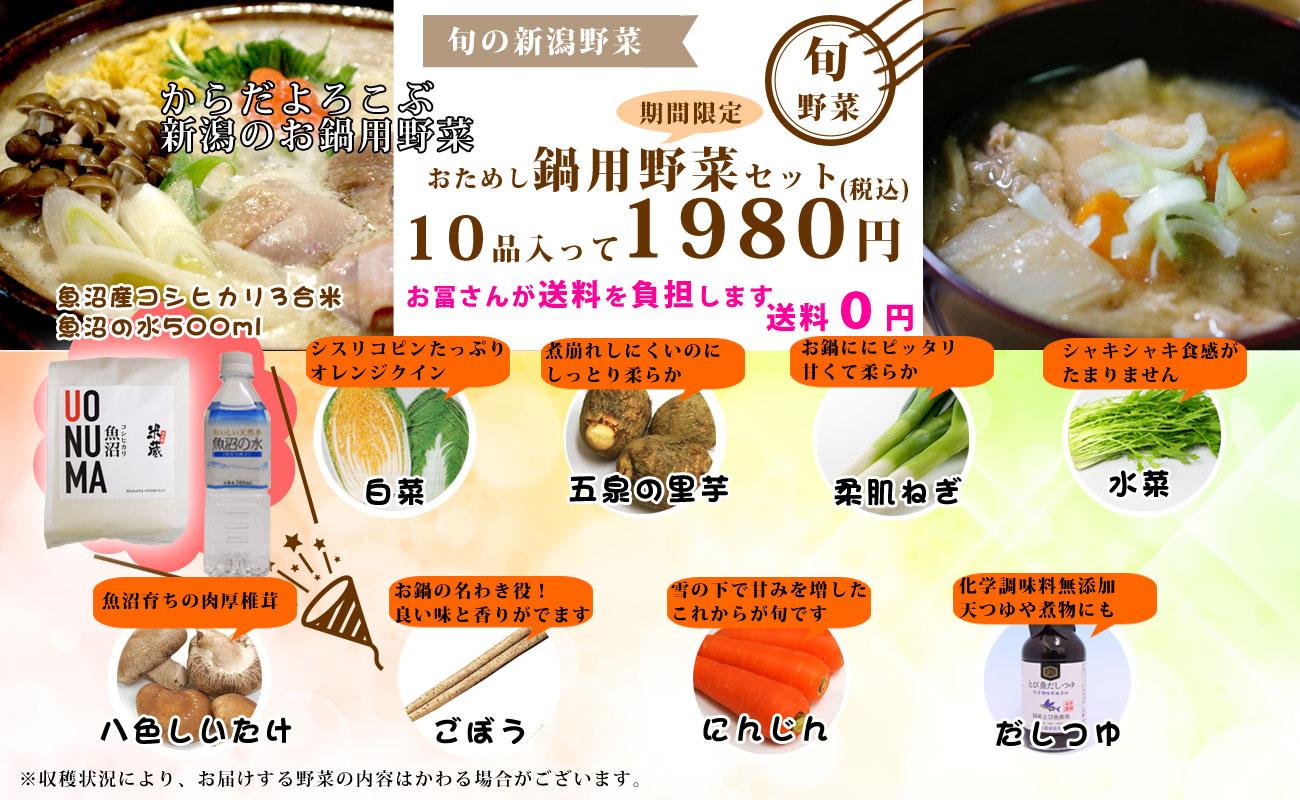 寒さに負けない新潟お鍋用野菜セット お試し価格 送料無料