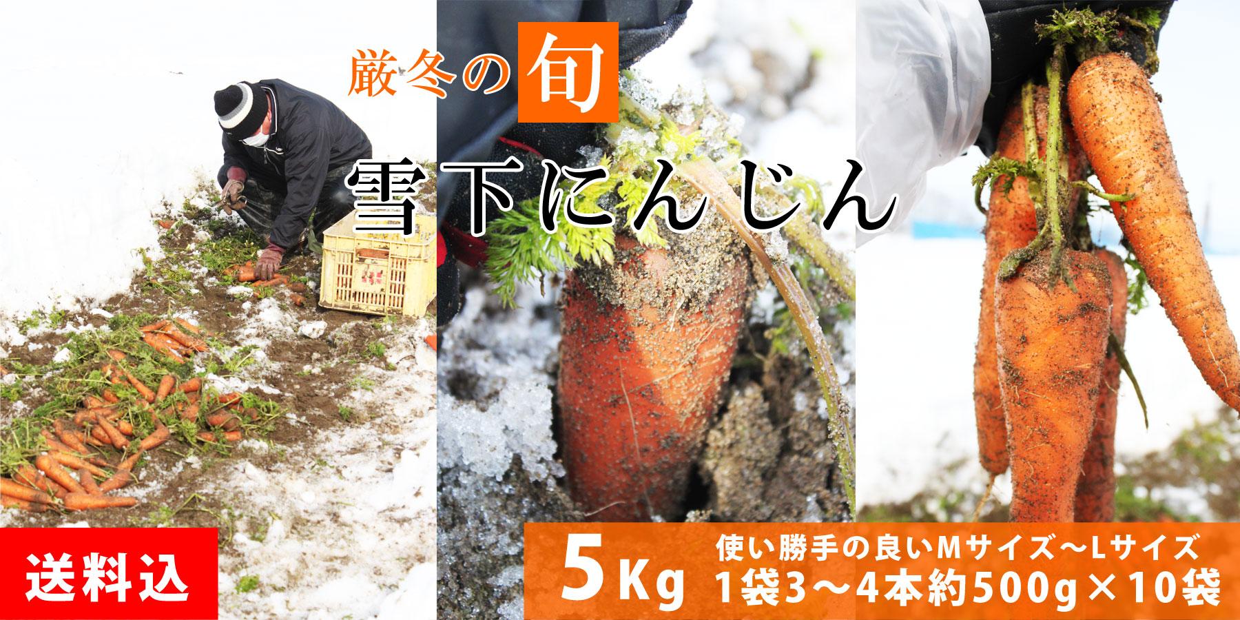 新潟春一番 送料無料!雪下にんじん 5Kg 宅配