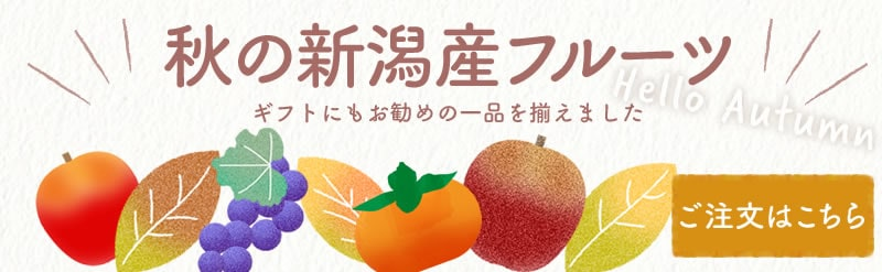 新潟産 ぶどう 種なし 柿 なし 白根 クリスマス お歳暮 ギフト