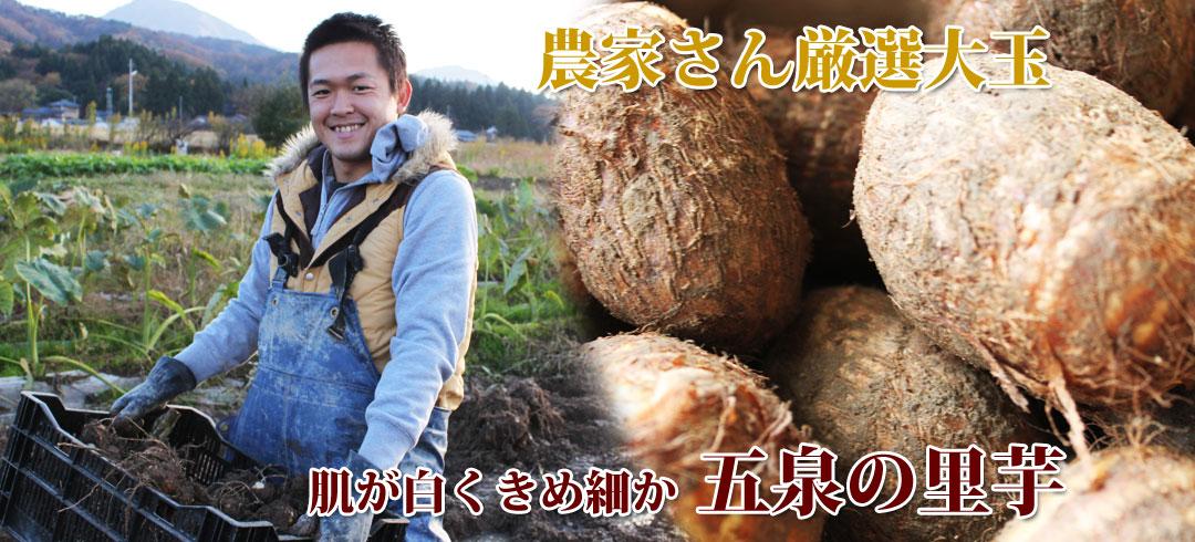 肌が白くきめ細かな五泉の里芋!農家さん厳選大玉をお届けいたします。