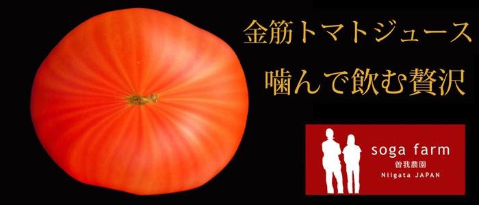 曽我農園 金筋トマトジュース〜噛んで飲む贅沢〜