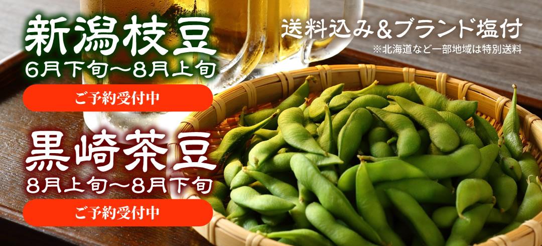 新潟枝豆・黒崎茶豆 送料込み&ブランド塩付※北海道など一部地域は特別送料