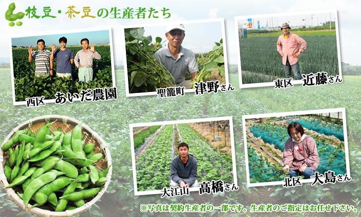 枝豆・茶豆の生産者たち