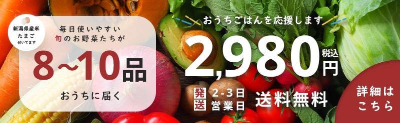 新潟県産米 卵付き 毎日使いやすい旬の野菜たちが8~10品おうちに届く