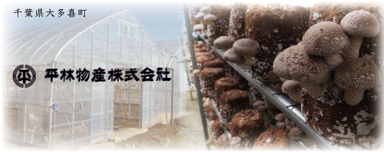 千葉県大多喜町「平林物産株式会社」