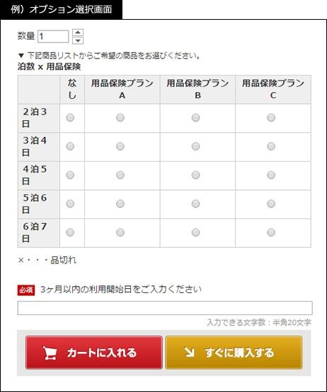 オプションの選択画面例