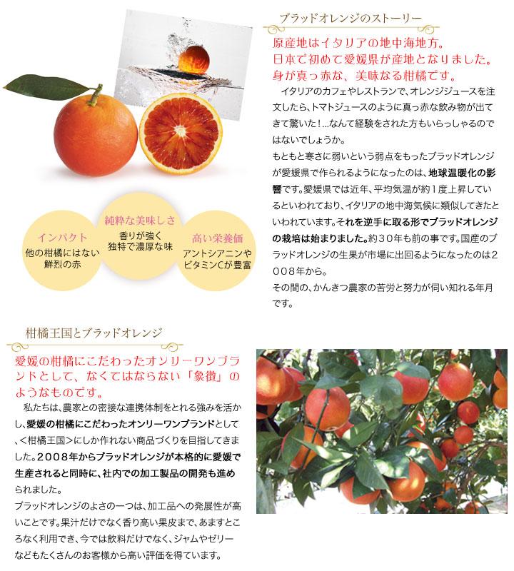 ブラッドオレンジ特集1