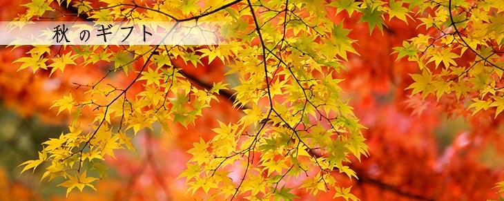 秋のギフト