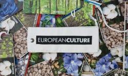 europeanculture ヨーロピアンカルチャー