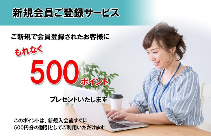新規会員ご登録特典 ネットショップに新規で会員登録されたお客様にもれなく500ポイントプレゼントいたします。このポイントは、新規入会後すぐに、500円分の割引としてご利用いただけます