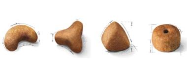 品種ごとに異なる様々な形状の粒