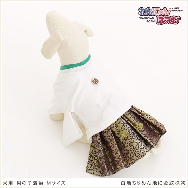 犬用着物レンタル男の子/小型〜中型犬Mサイズ和装