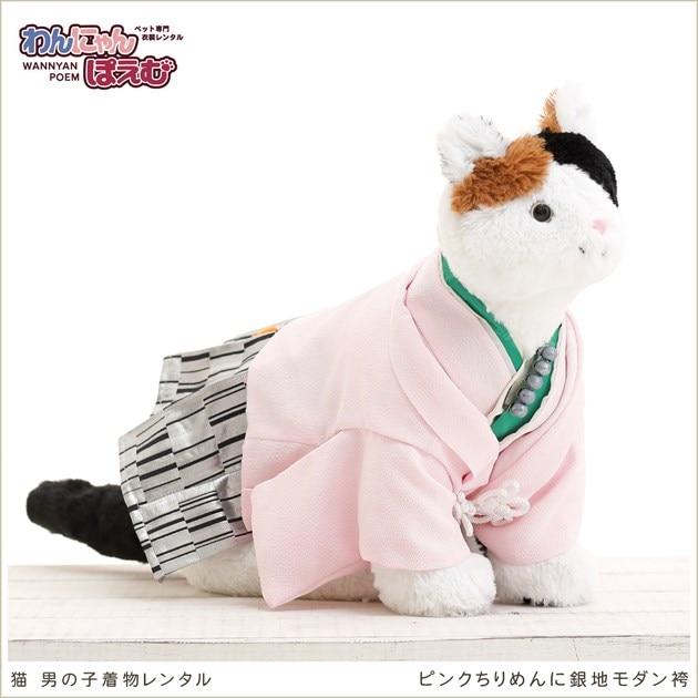 ペット着物,猫,衣装,男の子用