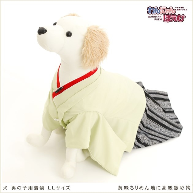 大型犬 d2l-006 黄緑ちりめん地に高級銀彩袴