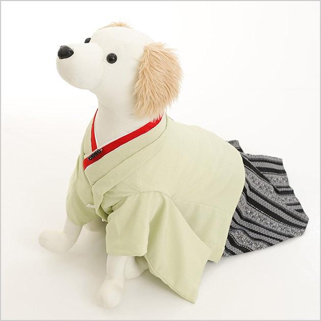 小型犬 d2l-006