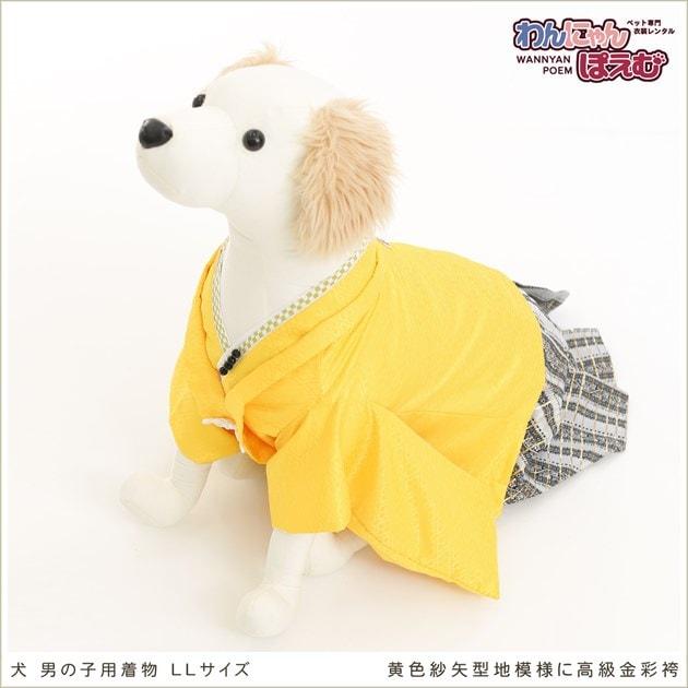 大型犬 d2l-009 黄色紗矢型地模様に高級金彩袴