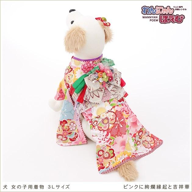 犬用着物レンタル女の子/大型犬3Lサイズ和装
