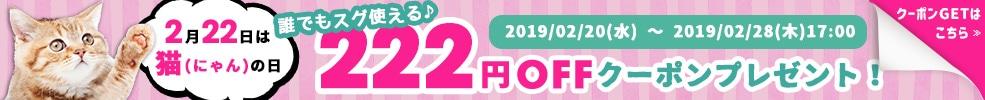 2月22日は猫(にゃん)の日誰でもスグ使える222円OFFクーポンプレゼント!
