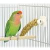 小鳥のミレットクリップ